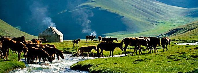 Kyrgyzstan: Fergana valley, between radioactivity and territorial conflicts